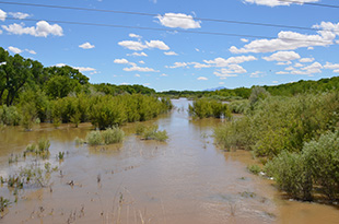 Hi flows in the Rio Grande May 19, 2017